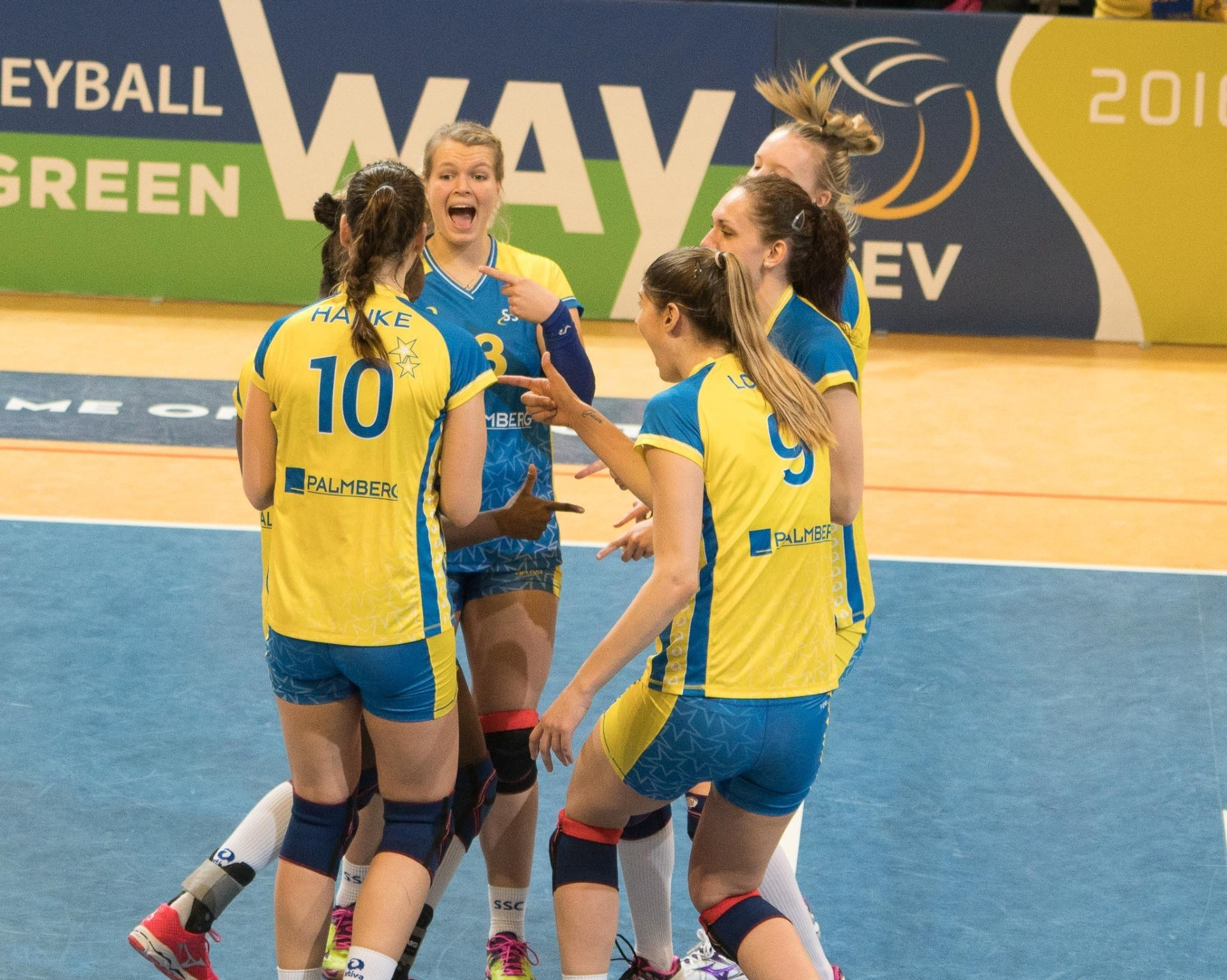 volleyball bundesliga frauen live