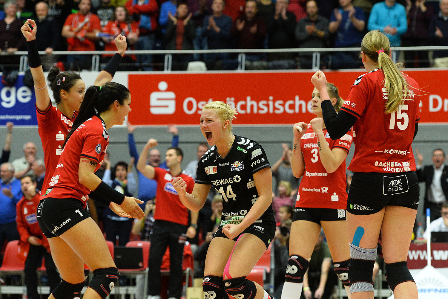 volleyball bundesliga damen