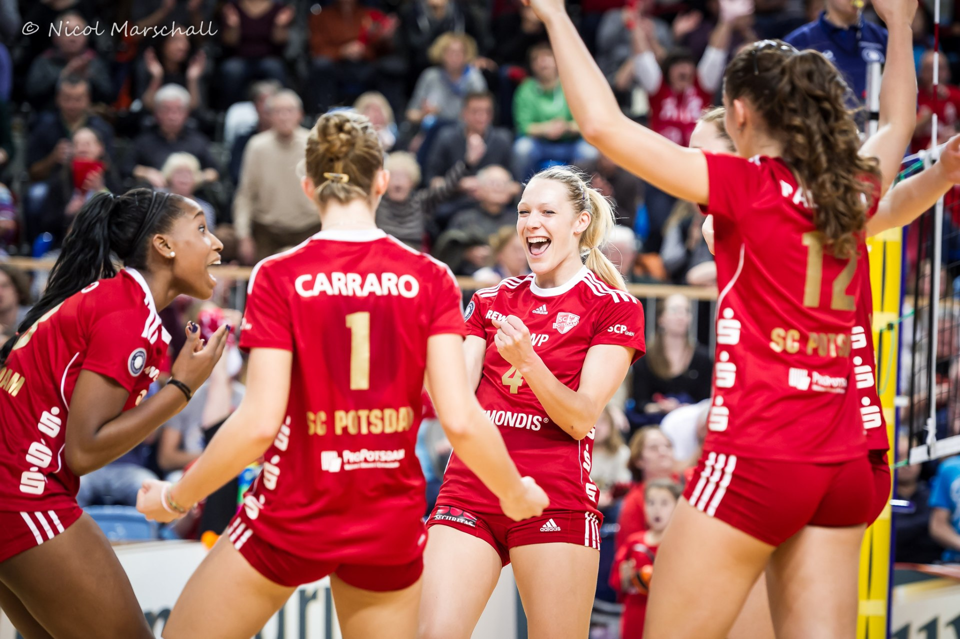 volleyball 2 bundesliga