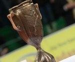 Der DVV-Pokal der Männer (Foto: Conny Kurth)